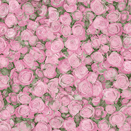 linoleum roses Linoleum roses by isabel solis plot summary symbolism she likes looking at the walls, at how neatly their corners meet, the linoleum roses on the floor, the ceiling smooth as wedding cake.