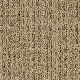 Interface Monochrome 346730 Barley